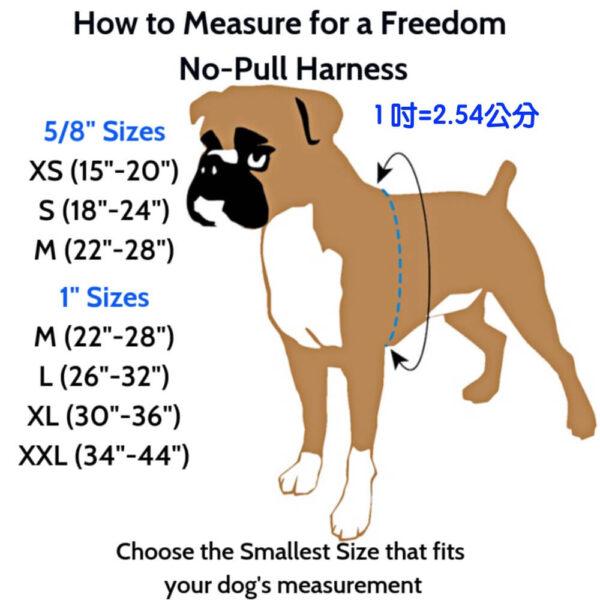Freedom 防衝胸背帶尺寸表