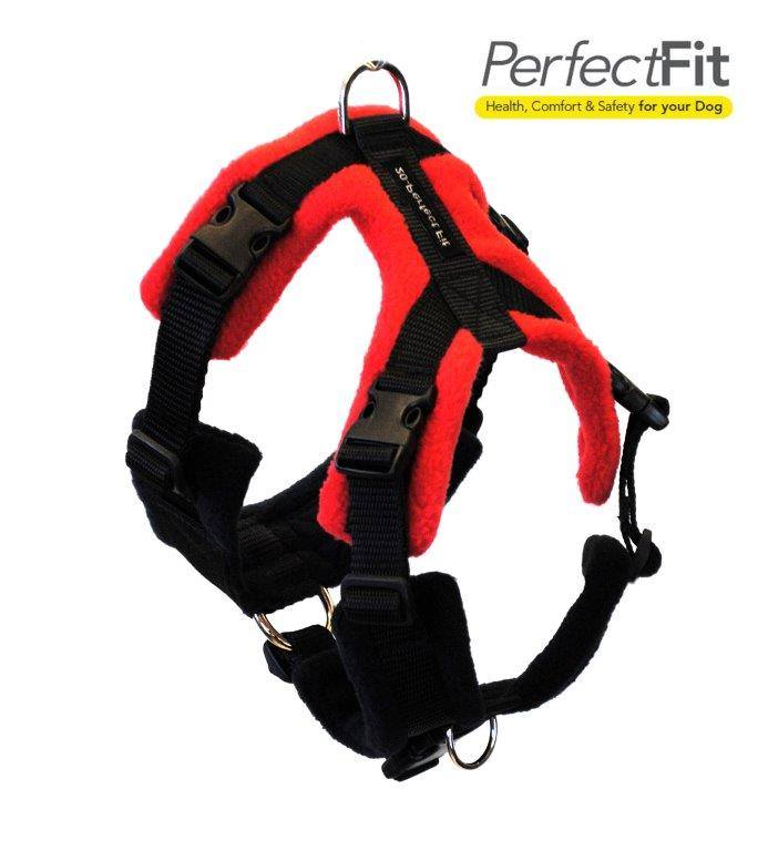 Perfect Fit Harness Red