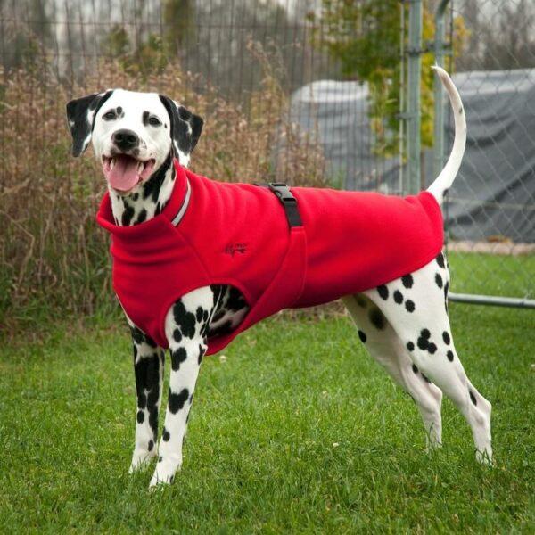 Chilly Dogs 刷毛保暖外套