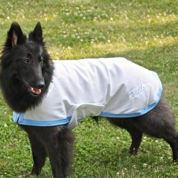 比利時狼犬涼感衣