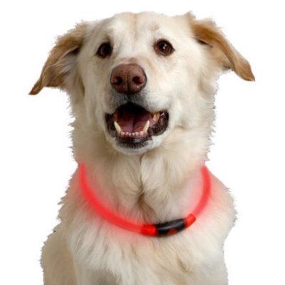 Nite Ize NiteHowl LED 安全發光項圈
