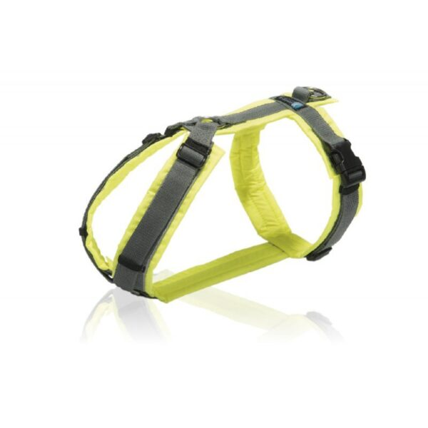德國 AnnyX Protect 反光胸背帶